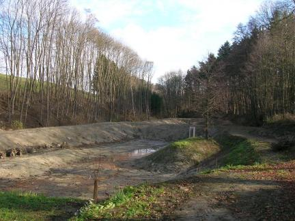 Teichanlage Frühling 2006