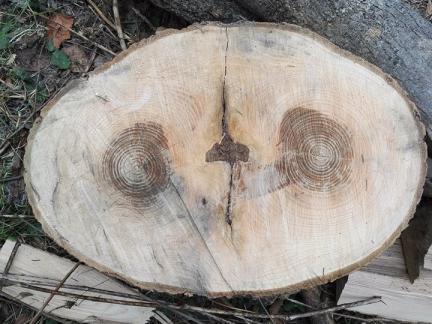 Jänner 2019 - Wie immer: Holzarbeit