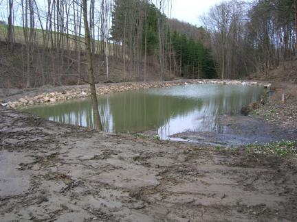 Auch der untere Teich ist voll!