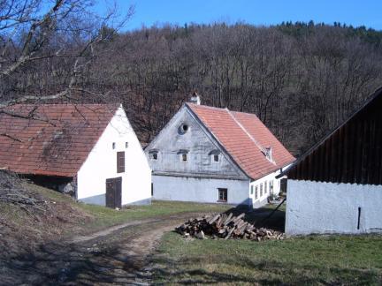 Blick auf Häuser vom Apfelbaum aus