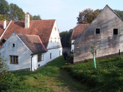 Kirschbaum 2005