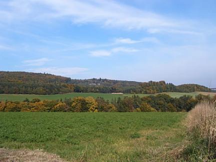 Landschaft (2005)