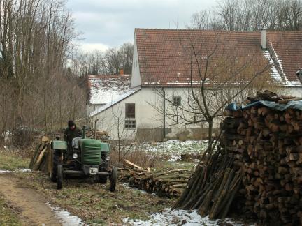 Und immer wieder Holzarbeit! :)