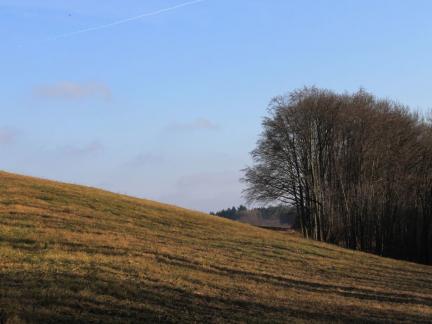 Landschaft (2014)
